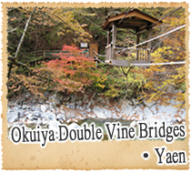Okuiya Double Vine Bridges Yaen