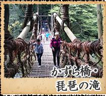 かずら橋・琵琶の滝