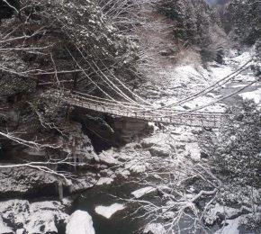 祖谷のかずら橋・祖谷渓谷・小便小僧の雪