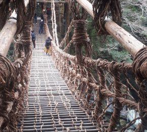 祖谷のかずら橋、架け替え工事終了